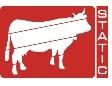 электропастух для овец, электропастух для овец купить, электропастух для овец цена, электропастух